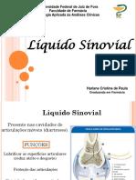 Liquido Sinovial - Apresentação
