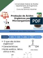 Produção de Ácidos Orgânicos