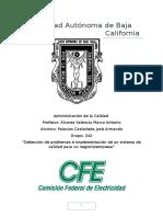 Trabajo Calidad comisión federal de electricidad