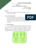 Práctico de Carbohidratos 2010