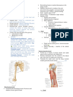 2.08 Brachial Region (Arm) - Compartments, Muscles, Nerves, And Vessels