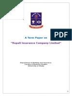 Term Paper (Insurance)
