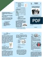 Triptico Desarrollo Organizacional