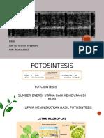 Fotosintesis Tanaman