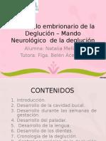 Desarrollo embrionario de la Deglución – Mando Neurológico.ppt