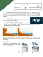 Rochas Sedimentares-ficha de Apoio - Parte 1