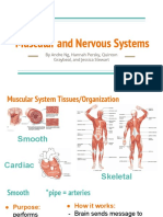 nervous and muscular systems  1