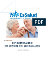 Plan Día Mundial del Adulto Mayor.pdf