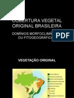 COBERTURA VEGETAL ORIGINAL BRASILEIRA.ppt