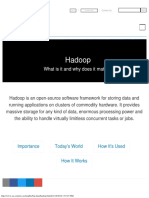 What is Hadoop_ _ SAS
