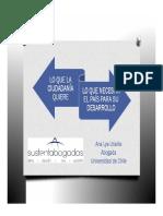 Lo Que La Ciudadania Quiere, Lo Que Necesita El País Para Su Desarrollo