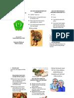 128407980-Leaflet-kesehatan-lansia.docx
