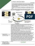 Physics Notes - Quanta to Quarks by David Pham