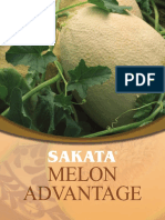 Sakata+Melon+Advantage+Brochure