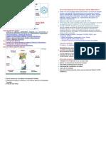 anunt-2015-08-26-01 (1).doc