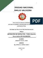 Informedenopalitosensalmuerafinal 150718174648 Lva1 App6892