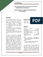 Informe Interfermetrodemichelson