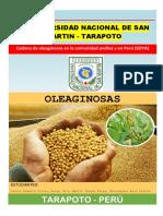 01. Cadena de Oleaginosas en La Comunidad Andina y Peru Oleaginosas