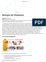 Biología Del Flebótomo