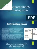 Bioseperacion Cromatografia