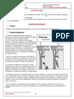 168656.pdf