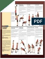 Total Body - PDF - Brazos (1).pdf