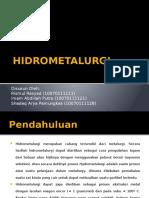 Hidrometalurgi