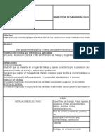 Formato de Informe de Inspecciones COPAST