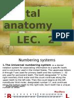 Dental Anatomy Lec.2