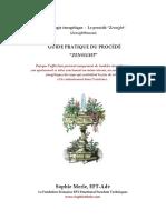 Guide pratique du procédé Zensight.pdf