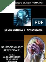 1. neuroaprendizaje