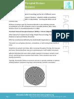 Dizziness - PPPD Information Sheet