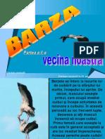 barza_parteaaiia.ppt
