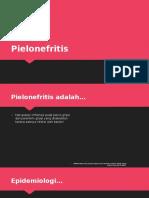 249418411-Pielonefritis