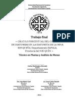 Cálculo Porcentual Del Contenido de Diatomeas en Diatomita V5.2 - Trabajo Final Técnico en Plantas y AM - Ingeniería UNComa - Carlos W. Mercado