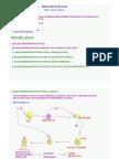 IMUNOPATOLOGI(1).pdf