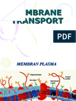 3. Transport Membran