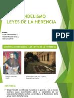 Leyes de Mendel - Alejos Sanchez