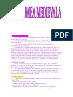 Lumea Medievala - Www.top-referat.ro
