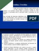 Avenidas_método_racional.pdf