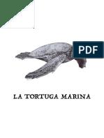 La tortuga marina