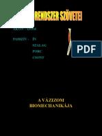 biomechanikai izomkontrakcio