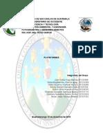 PLATAFORMAS-TFIN.docx