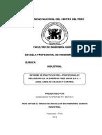 Informe-de-practicas-FREE ANDINA.docx