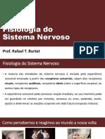 Fisiologia Do Sistema Nervoso