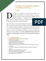 HUMEDALES EN EL PERU.docx