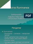 1. Nutrisi Ruminansia_Pengantar.ppt