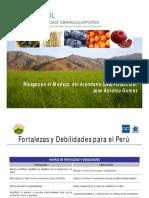 Gomes - Presentacion Arandanos y Riesgos