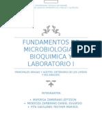 Ensayo de Micro Principales Grasas y Aceites y Deterioro de Los Lipidos y Iso Analisis