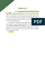 Informe_determinacion Gravimetrica Del Hierro